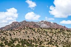 Ekologia jaru Canon Parkowy Świątynny miasto Kolorado Zdjęcia Stock