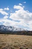 Ekologia jaru Canon Parkowy Świątynny miasto Kolorado fotografia royalty free