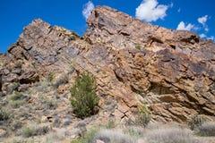 Ekologia jaru Canon Parkowy Świątynny miasto Kolorado obrazy stock