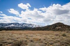 Ekologia jaru Canon Parkowy Świątynny miasto Kolorado Obraz Stock