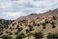 Ekologia jaru Canon Parkowy Świątynny miasto Kolorado Obrazy Royalty Free
