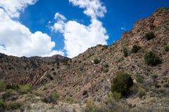 Ekologia jaru Canon Parkowy Świątynny miasto Kolorado Zdjęcia Royalty Free