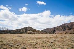 Ekologia jaru Canon Parkowy Świątynny miasto Kolorado Zdjęcie Royalty Free