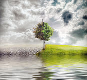 ekologia krajobraz Obraz Royalty Free