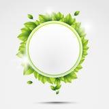 Ekologia okrąg z liśćmi Obrazy Stock