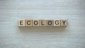 Ekologia, ręki pcha słowo na drewnianych sześcianach, środowisko ochrona, przetwarza zbiory wideo