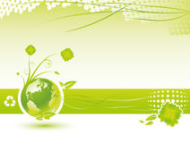 Ekologibakgrund Arkivfoto