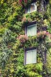 Ekologiczna dekoracja budynek Zdjęcia Royalty Free