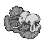 Ekologiczna jarzynowa sałatka Sałatka dla jaroszy Jarscy naczynia przerzedżą ikonę w monochromu stylu symbolu wektorowym zapasie Obrazy Stock