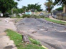 Ekologiczna szkoda: drzewa w Puerto Ordaz mieście, Wenezuela, są ciącym puszkiem w protestach ten południe - amerykański kraj M Zdjęcia Royalty Free