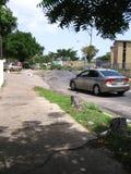 Ekologiczna szkoda: drzewa w Puerto Ordaz mieście, Wenezuela, są ciącym puszkiem w protestach ten południe - amerykański kraj M Obrazy Stock
