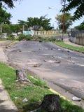Ekologiczna szkoda: drzewa w Puerto Ordaz mieście, Wenezuela, są ciącym puszkiem w protestach ten południe - amerykański kraj M Fotografia Royalty Free