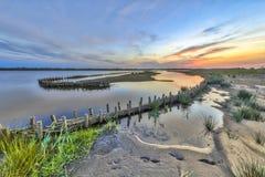 Ekologiczni mokrzy ławka banki w rozwoju terenie Obrazy Royalty Free