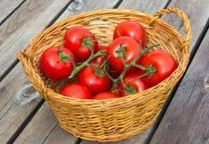 ekologiczni pomidory Zdjęcia Royalty Free