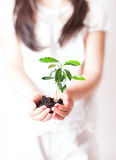 Ekologicznie Życzliwy Obraz Stock