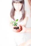 Ekologicznie Życzliwy Zdjęcia Royalty Free