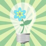 ekologiczny światła żarówki Obraz Royalty Free