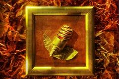 Ekologiczny lampowy pojęcie Obrazy Stock