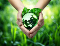 Ekologiczny pojęcie Ukierunkowywa - gacenie światu zieleń - Zdjęcie Stock