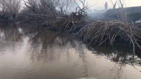 Ekologiczny problem powodować zanieczyszczenie środowiska dymem od ogienia na brzeg rzekich zbiory
