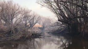 Ekologiczny problem powodować zanieczyszczenie środowiska dymem od ogienia na brzeg rzekich zbiory wideo