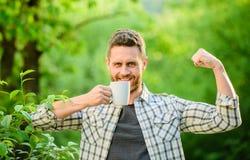 ekologiczny ?ycie dla m??czyzny mężczyzna w zielonym lasowym szczęśliwym mężczyźnie z filiżanką herbata fili?anki opatrunkowy dzi zdjęcia royalty free