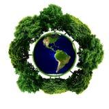 Ekologii planeta z z drzewami wokoło ziemski eco Zdjęcie Stock