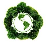 Ekologii planeta z z drzewami wokoło ziemski eco Fotografia Royalty Free