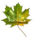 Ekologii Środowisko Zdjęcie Royalty Free