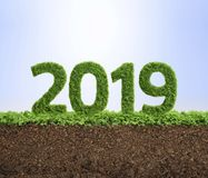2019 ekologii roku zielony pojęcie Zdjęcie Royalty Free