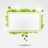 Ekologii skewer z liśćmi Zdjęcia Royalty Free
