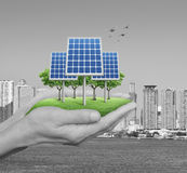 Ekologimakt och energibegrepp Arkivbilder