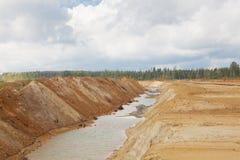Ekologisk catastrophy i gyttjasandvillebråd arkivbild