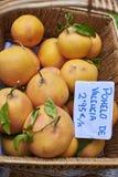 Ekologisk grapefrukt i en vide- korg Royaltyfri Foto