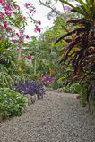 Ekologisk trädgård Arkivbilder