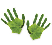 ekologiska greenpeace hand natufjädersymbol Royaltyfria Foton