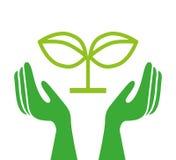 Ekologiska händer som skyddar isolerad symbolsdesign Fotografering för Bildbyråer