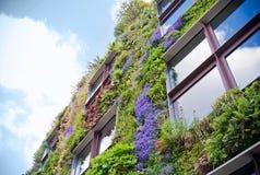 ekologiskt byggande Arkivbild