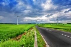 Ekologiskt landgräsplanlandskap på molnig himmel Arkivfoto