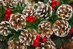 ekologiskt trä för julgarneringar jul min version för portföljtreevektor Royaltyfri Bild