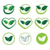 Ekologiuppsättning av symboler av gröna sidor Royaltyfria Bilder