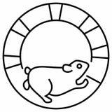 Ekorre för vänd för lopp för spring för körning för hamsterhjulhusdjur arkivfoto