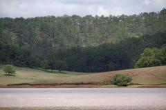 Ekosystem, środowisko, zielona łąka obok jeziora z niebieskim niebem i chmury część 5 i, obraz stock