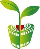 Ekranowy roślina projekt ilustracji