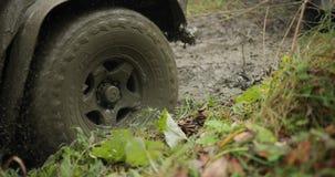 Ekspedycyjny SUV dostać zablokowanym w błocie w lesie i wydostawał się przez innego SUV Z drogowego pojazdu używać winch dla zbiory