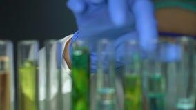 Ekspert bierze błękitną ciekłą próbkę od próbnej tubki stojaka, sprawdza badawczego rezultat zbiory