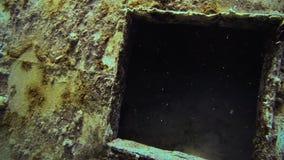 Eksploracja Podwodna w San Andres Kolumbia zbiory