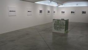Ekspozycja Ai Weiwei Zdjęcia Stock
