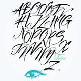 Ekspresyjny kaligraficzny pismo. Kapitałowi listy. Obraz Royalty Free