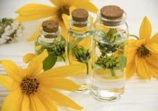Ekstrakt, kwiaty, składnik butelki naturalny ziołowy aromatherapy biały drewniany tło fotografia royalty free